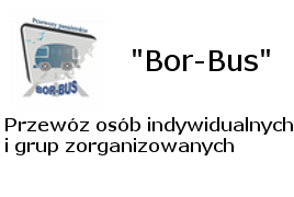 http://panoramafirm.pl/wielkopolskie,pozna%C5%84ski,tarnowo_podg%C3%B3rne,%C5%82anowa,19/bor_bus_leszek_borowiak-aajdzw_ntb.html